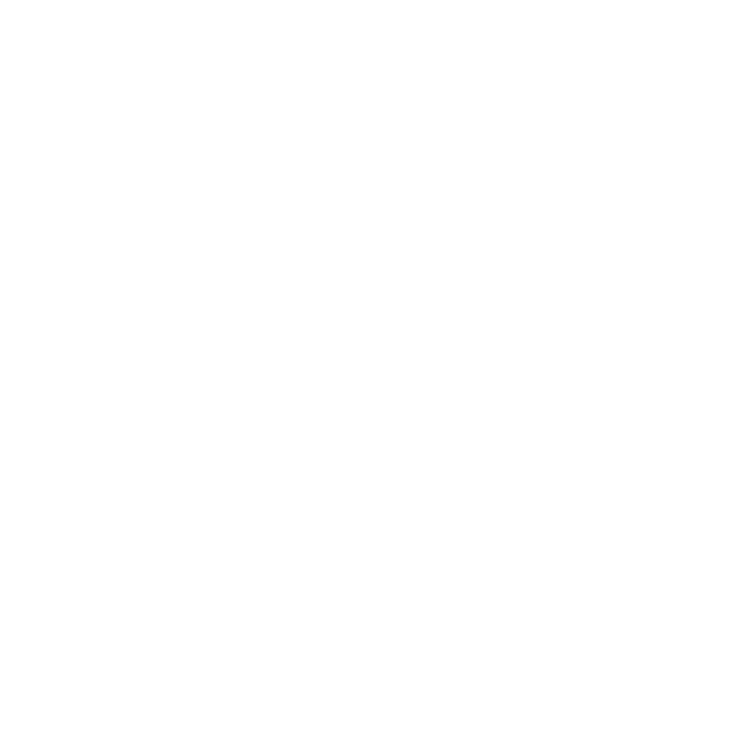 Airplane with a Fuel Pump